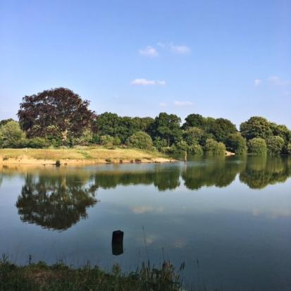 Sopley Lake 2